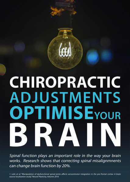 Have a Complimentary Chat with a Chiropractor Tauranga (3110) Rehabilitation Chiropractors 2